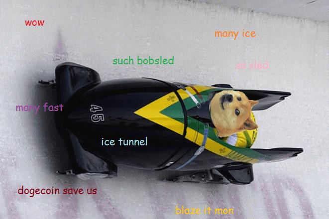 doge-jamaica